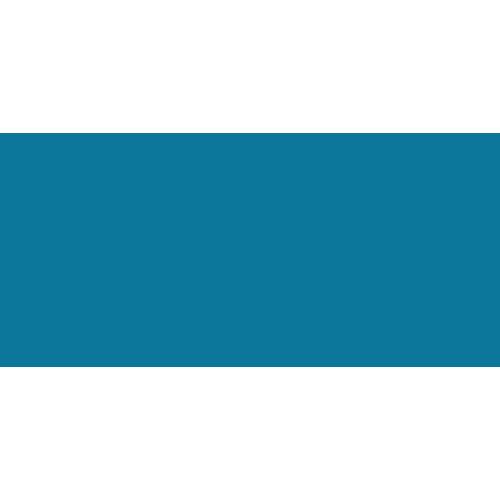 Vamos Ramos!